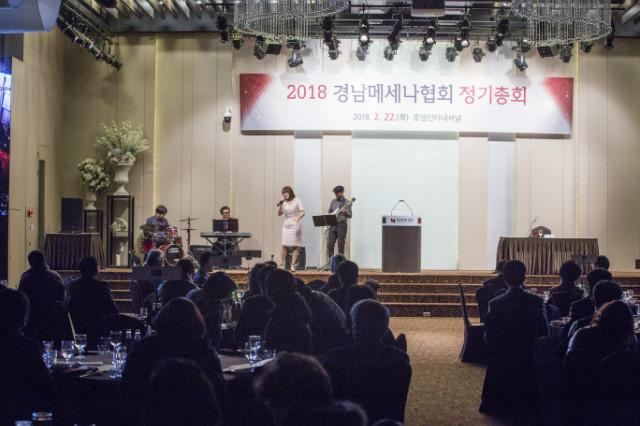 20180222 메세나 정기총회_029.jpg