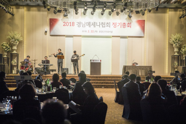 20180222 메세나 정기총회_004.jpg